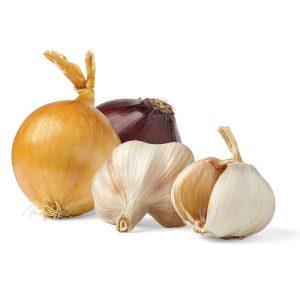 Sjemenska lučica,češnjak